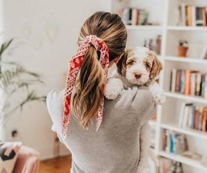adorable, bandana, and dog image