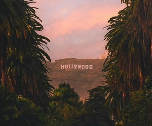 aesthetic, los angeles, and tumblr image