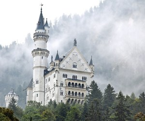 castle, neuschwanstein, and forest image