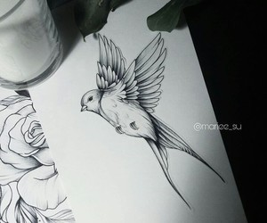 art, bird, and illustration image