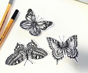 art, painting, and butterfly image