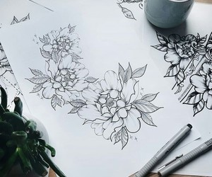 drawing, flowers, and peony image