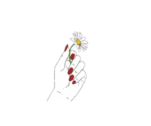 design, flowers, and hands image