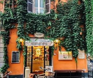 orange, green, and travel image
