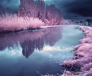 pink, nature, and sky image