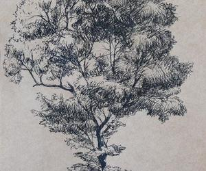 drawing, sketch, and tree image