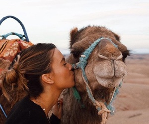 girl, camel, and summer image