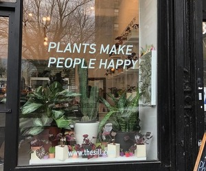 green, plants, and shop image