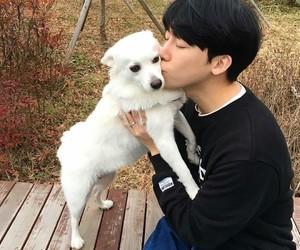 boy, dog, and kfashion image