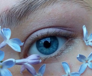 blue, flowers, and eye image