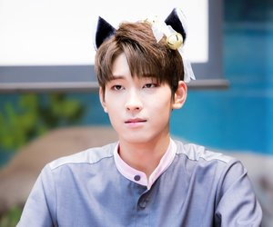 kitty, jeon wonwoo, and Seventeen image