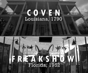 all, asylum, and freak show image