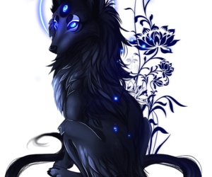 wolf and fantasy image