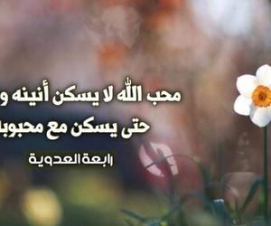 Image by rehana_bk2