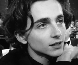 golden globes, timothee chalamet, and call me by your name image