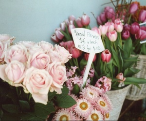 bouquet, pink, and floral image
