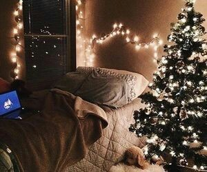 atmosphere, christmas tree, and home image