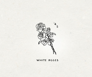 aesthetic, black and white, and rose image