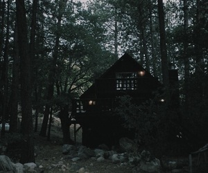 forest, green, and house image