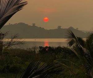 palms and Sri Lanka image