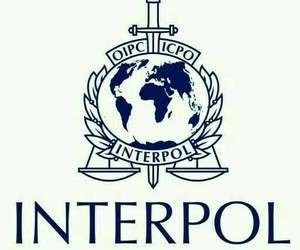 interpol, police, and simbolo image