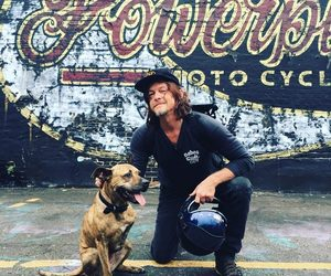 actor, animal, and norman reedus image