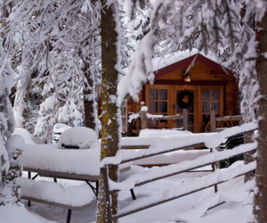 snow, cabin, and winter image