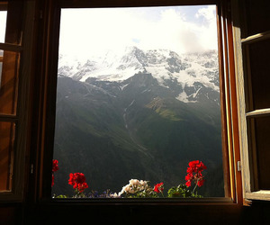 mountains, flowers, and window image