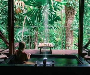 bath, green, and nature image