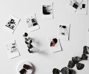 polaroid and white image