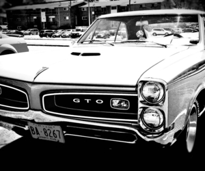 1960s, black&white, and GTO image