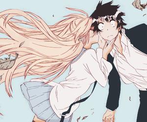 nisekoi, anime, and manga image