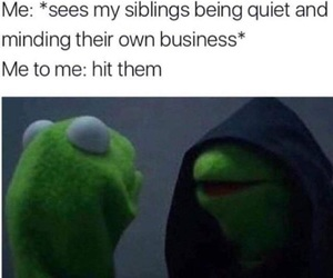 funny, siblings, and kermit image