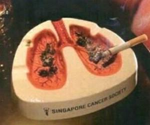 cigarrillo, fumar, and tumblr image