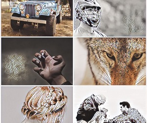claws, Collage, and mosaic image