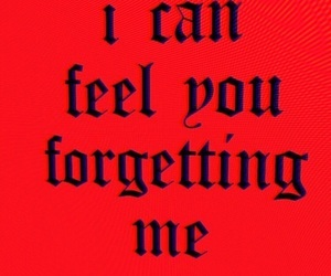 quotes, red, and forget image