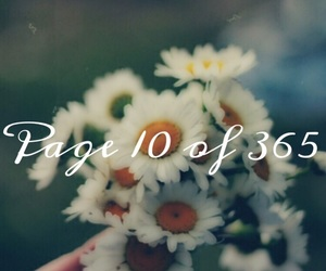 new day, flowers, and 365 days image