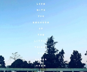 quotes, love, and lovehavenoreason image