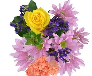 color me purple, mother's day flowers, and recital flowers image