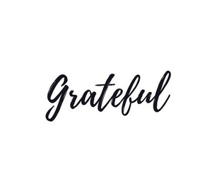 quotes, grateful, and inspiration image
