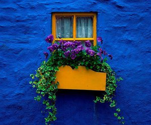 frida kahlo, house window, and casa azul image
