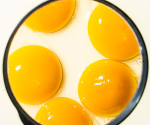 yellow and eggs image