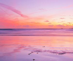 beautiful, pink, and sea image