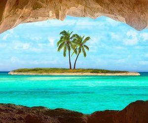 paradise, coqueiro, and isla image