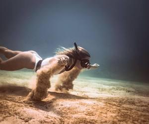 diving, sea, and mergulho image