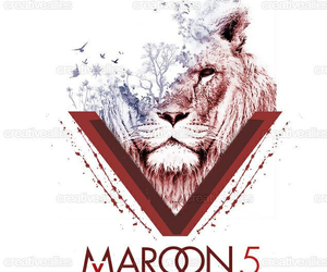 maroon 5, lion, and maroon five image