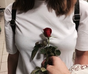 aesthetic, romantic, and rose image