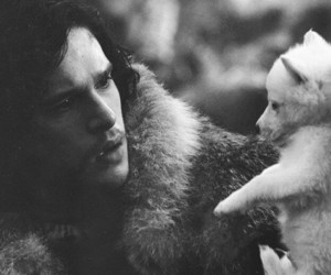 game of thrones, jon snow, and wolf image