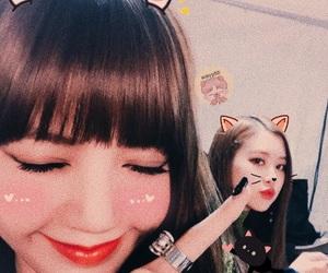 lisa, blackpink, and rose image