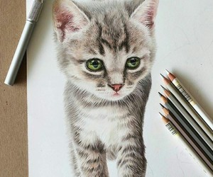 art, cat, and drawing image